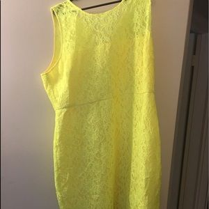 J Crew yellow lace dress new with Tags